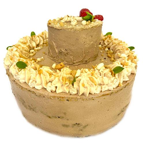 slavnostni dort pro psa zolly VELKY narozeniny psa
