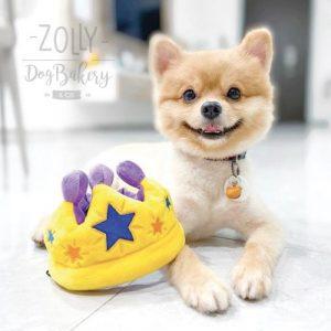 zolly petplay hracky pro psy korunka