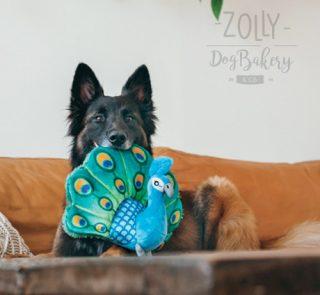 zolly petplay hracky pro psy pav