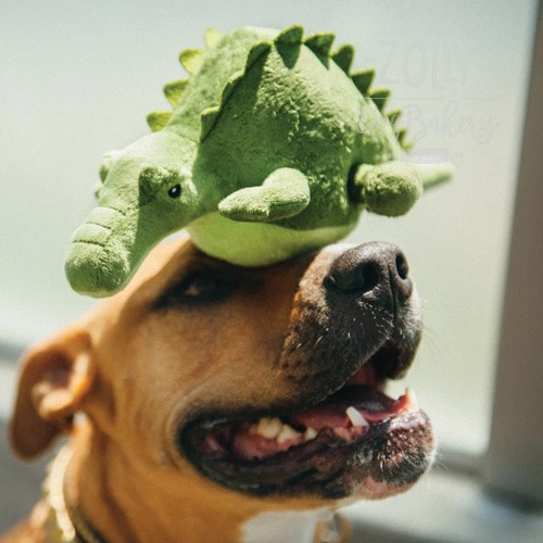 zolly petplay hracky pro psy krokodyl