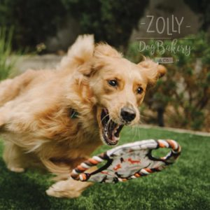 zolly petplay hracky pro psy ven outdoor disk