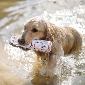 zolly petplay hracky pro psy ven outdoor hazedlo