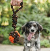 zolly petplay hracky pro psy ven outdoor uzel