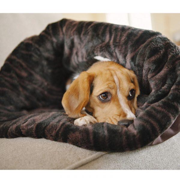 zolly petplay pelech pro psa