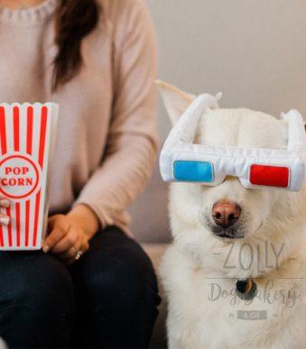zolly hracky pro psy petplay 3d bryle